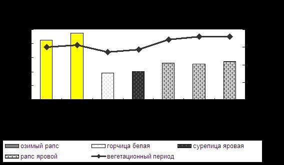 озимый рапс, горчица белая, сурепица яровая, рапс яровой, вегетационный период